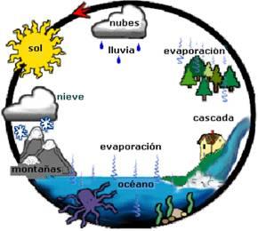 ciclohidro